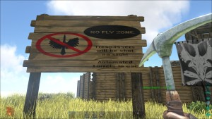 No Fly Zone1