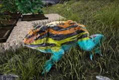 Poison Dart Toad