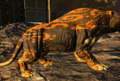 Orange Pattern Sabertooth