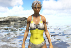 Female One Piece Swimsuit