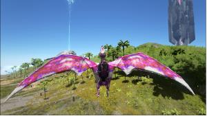 purpleorange2 (1)