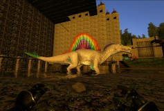 Rainbow Spino FIX