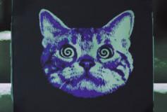 Hypno-Cat Painting