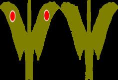 Japanese Pteranodon