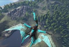 Black & Blue Quetzal