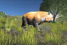 Red Panda Dire Bear