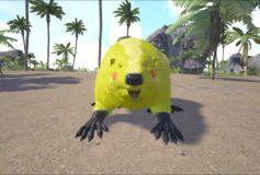 Pikachu Beaver