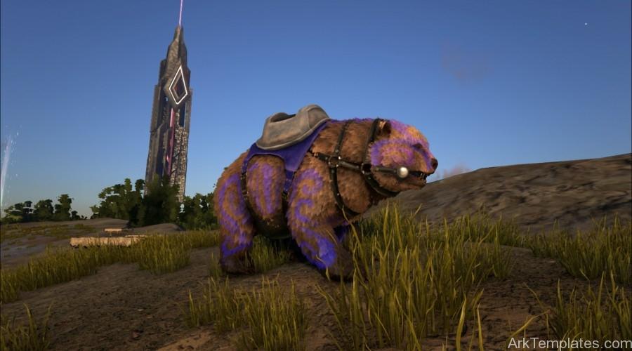 BShadows-Bear-Blue-Purple-with-Saddle-900x500