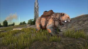 BShadows-Bear-Orange-with-Saddle-900x500