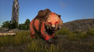 BShadows-Bear-Red-with-Saddle-900x500