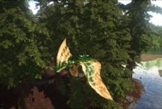Forest Camo Tapejara