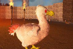 Dodo Chicken