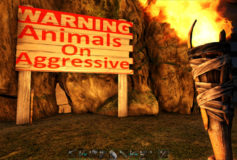 Animals On Aggressive