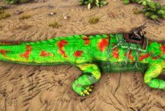 Salamander Sarco
