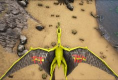 Quetzal TET(Transport En Tribe)(Transport to tribe)